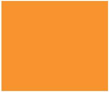 DE Systems Logo